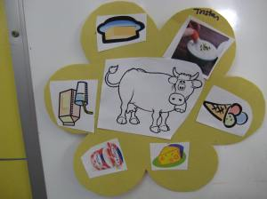 What can you make from milk? These are all dairy products: ice cream. butter, milk, yogurt, sour cream.